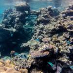 Unterwasser 3