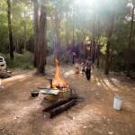 Nachtlager im Wald 2