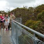 Tree Top-Walk 1