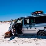 Cape Arid 3