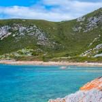 Rocky Cape NP 1