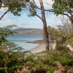 Bruny Island 4