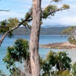 Bruny Island 5