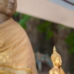Wat tham seua 15